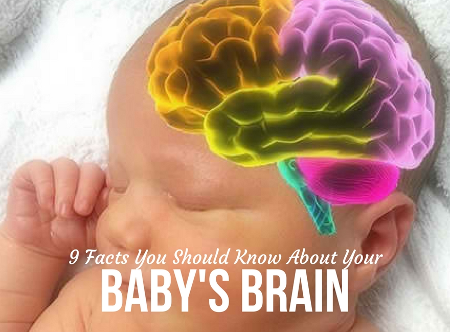 9 facts you should know about your baby's brain