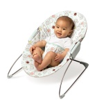 best bouncy chairs for babies
