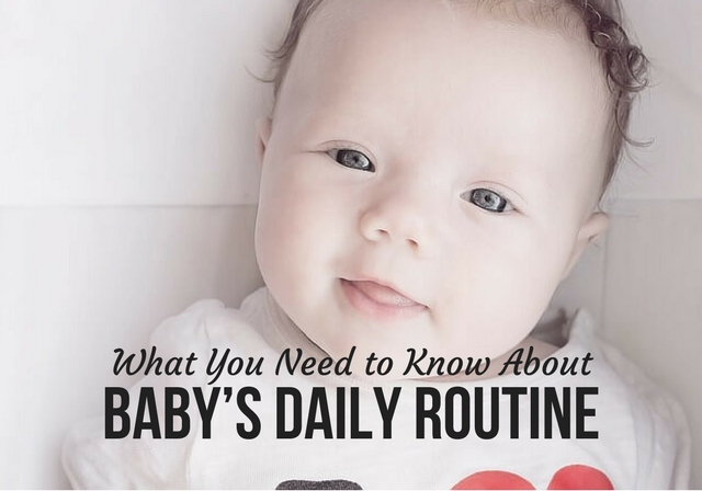 What You Need to Know about Baby's Daily Routine