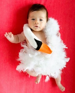 Bjork swan DIY halloween costume