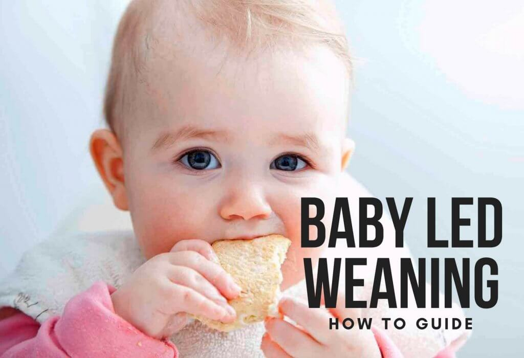 BABY LED WEANING HOW TO GUIDE