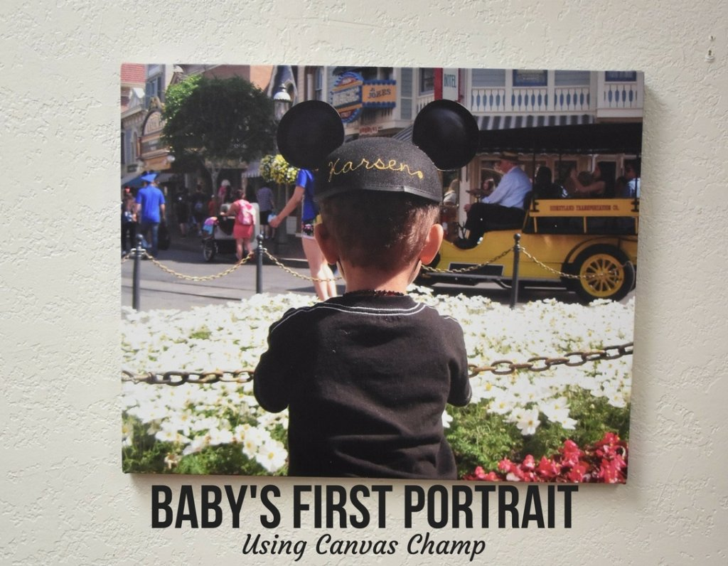 Baby's First Portrait Using Canvas Champ