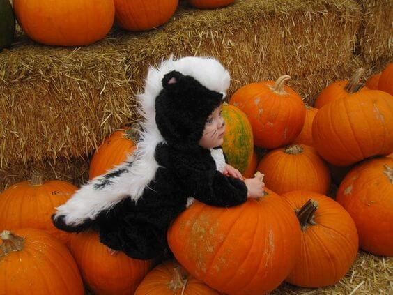 10 Baby Animal Costumes | Baby Costume Halloween | Baby Halloween Customes | Halloween Baby Ideas | Baby Customes Halloween |Halloween Onesies Baby | Baby Halloween Ideas | Baby Halloween Projects | Halloween Baby DIY | Halloween Customes for Babies | First Halloween Baby | Babies Halloween | Halloween Baby Boy | Halloween with Baby | Halloween Baby Activities | Funny Baby Halloween | Halloween Ideas for Baby | Baby Skunk Costume | First Halloween #halloween #baby #costumes #ideas